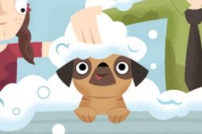 Pug's Bath Time